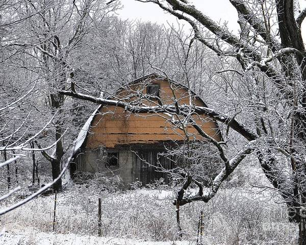 Barn Poster featuring the photograph Winter Barn Iv by Frank Muller