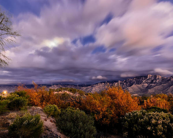 Oro Valley Poster featuring the photograph Winter Colors 23 by Mark Myhaver