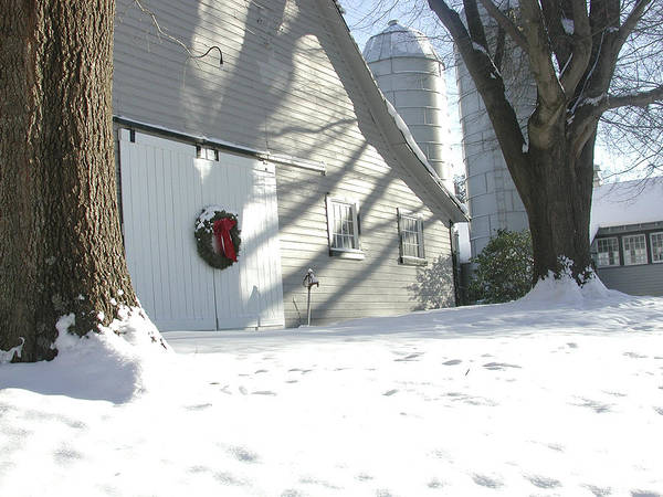 Winter Poster featuring the photograph Winter Holiday At The Farm. by Robert Ponzoni