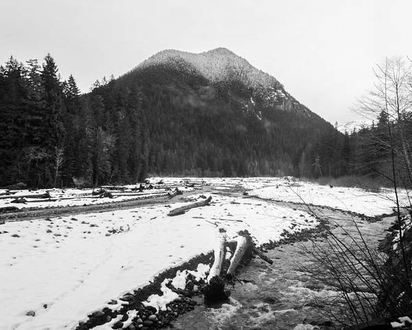 Black And White Poster featuring the photograph Winter Snow, Carbon River, Washington, 2016 by Steve G Bisig