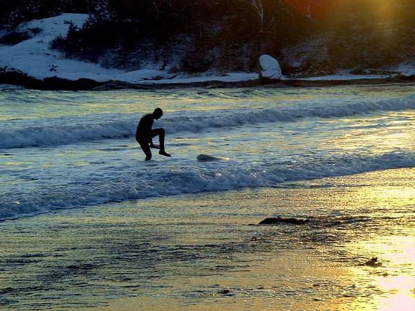 Winter Poster featuring the photograph Winter Surfing 3 by Heidi Kummer