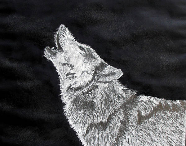 Pencil Poster featuring the drawing Wolf Howl by Stan Hamilton