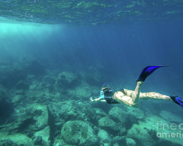 Snorkeling Poster featuring the photograph Woman Free Diving by Benny Marty