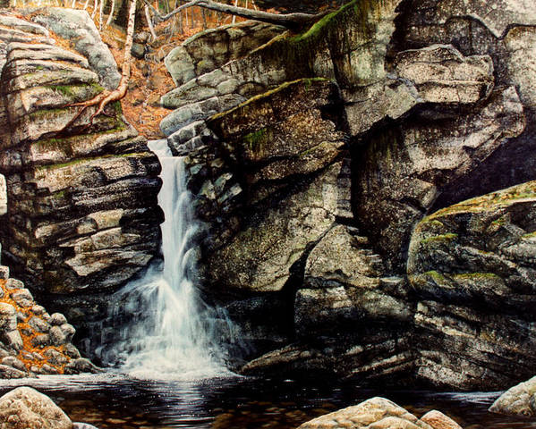 Waterfall Poster featuring the painting Woodland Falls by Frank Wilson