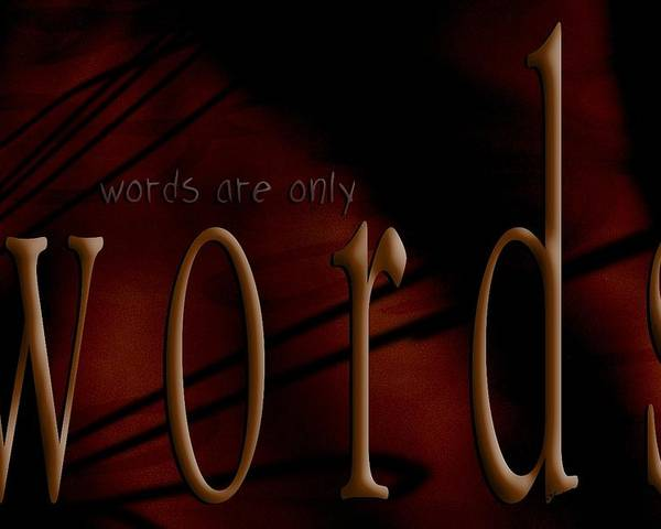 Implication Poster featuring the photograph Words Are Only Words 5 by Vicki Ferrari
