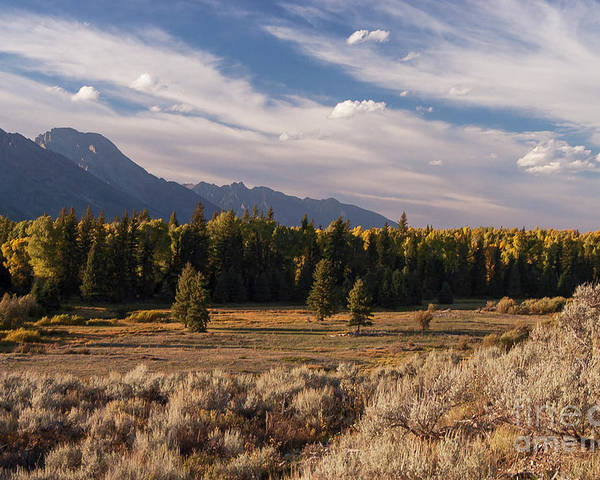 Jackson Hole Poster featuring the photograph Wyoming Scenery One by Bob Phillips