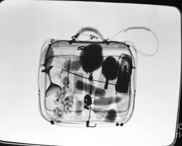 X-ray Poster featuring the photograph X-ray Of Suitcase by Science Source