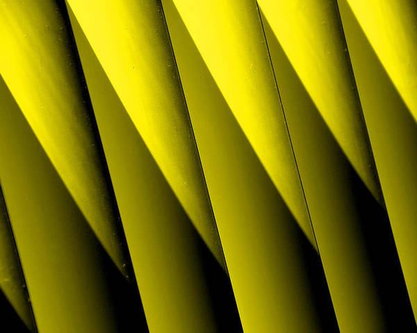 Yellow Borders Poster featuring the photograph Yellow Borders by Susanne Van Hulst