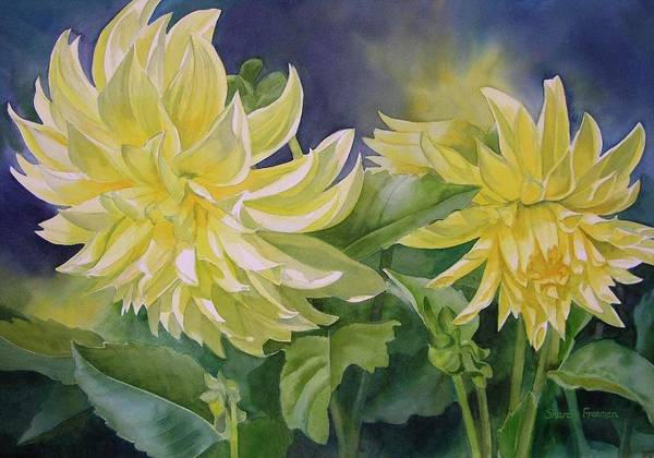 Watercolor Poster featuring the painting Yellow Dahlia Duet by Sharon Freeman