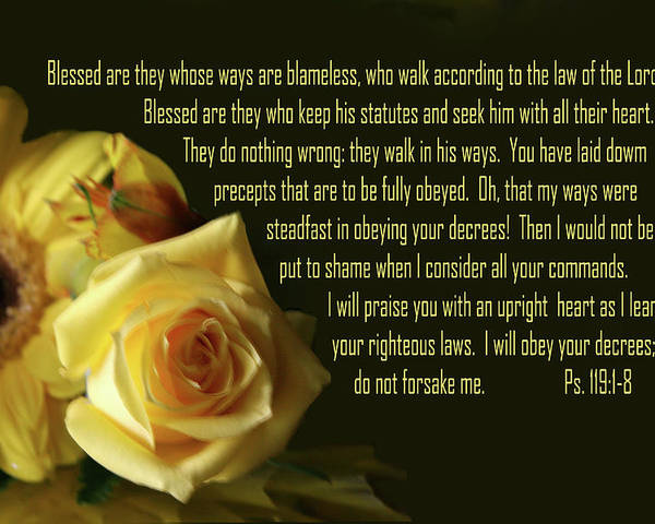 Scripture Poster featuring the photograph Yellow Flowers Ps.119 V 1-8 by Linda Phelps