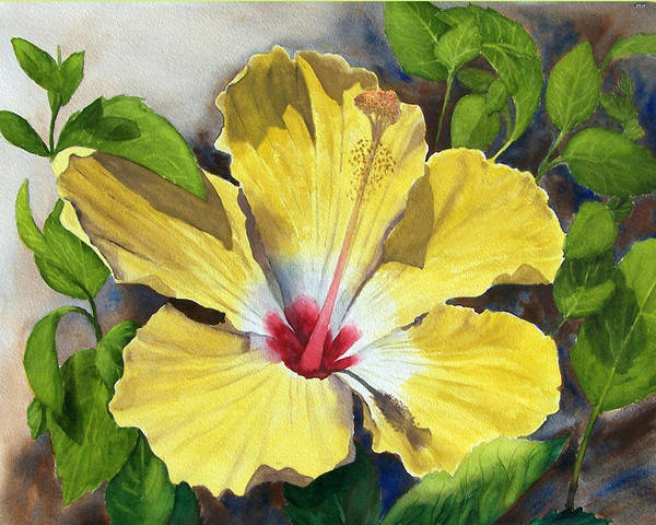 Floral Poster featuring the painting Yellow Hibiscus by Robert Thomaston