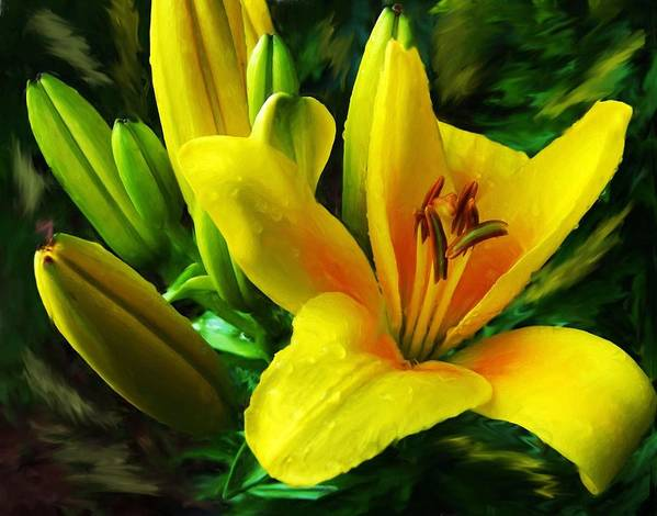 Lily Poster featuring the digital art Yellow Lily by Jim Darnall