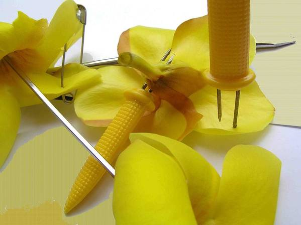 Still Life Poster featuring the photograph Yellow Still Life by Evguenia Men