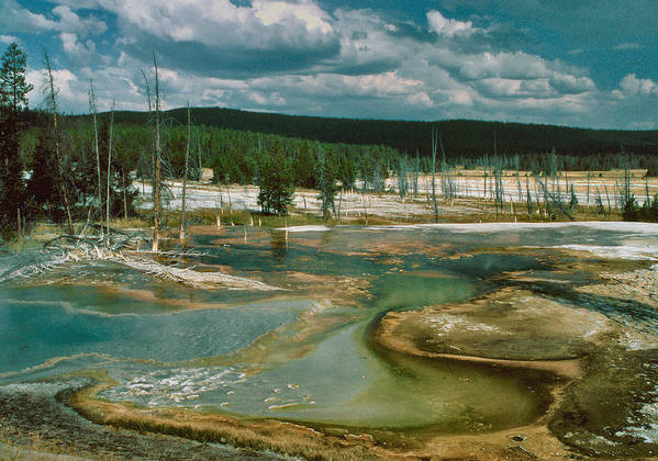 Landscape Poster featuring the photograph Yellowstone by Alex Nakhshon