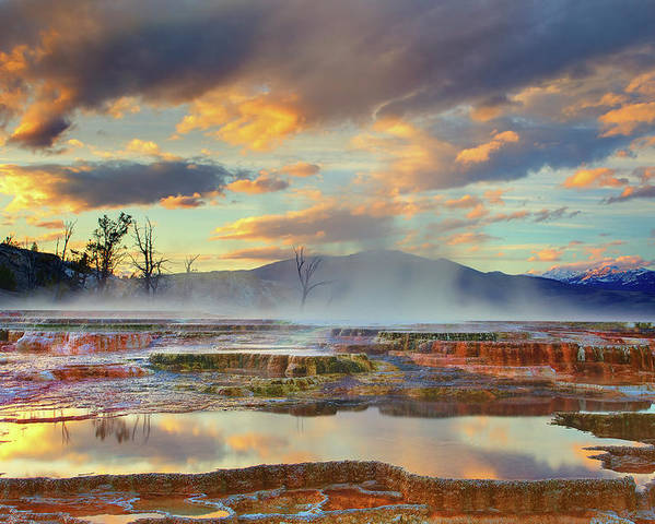 Horizontal Poster featuring the photograph Yellowstone National Park-mammoth Hot Springs by Kevin McNeal