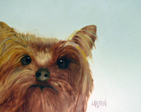 Poster featuring the painting Yorkshire Terrier by Dick Larsen