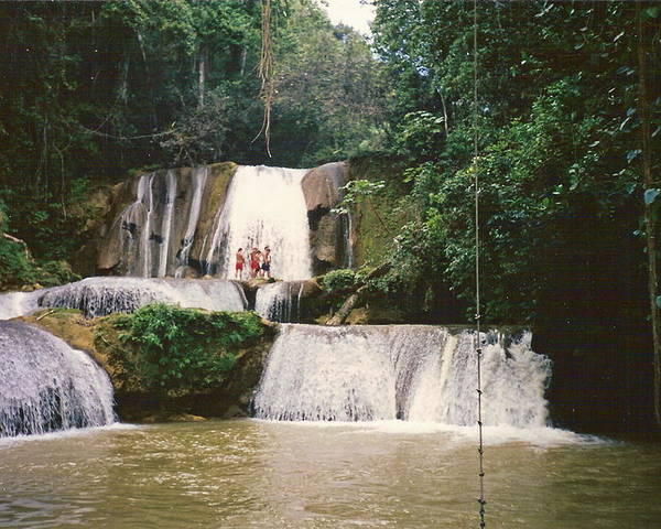 Jamaica Poster featuring the photograph Ys Falls Jamaica by Debbie Levene