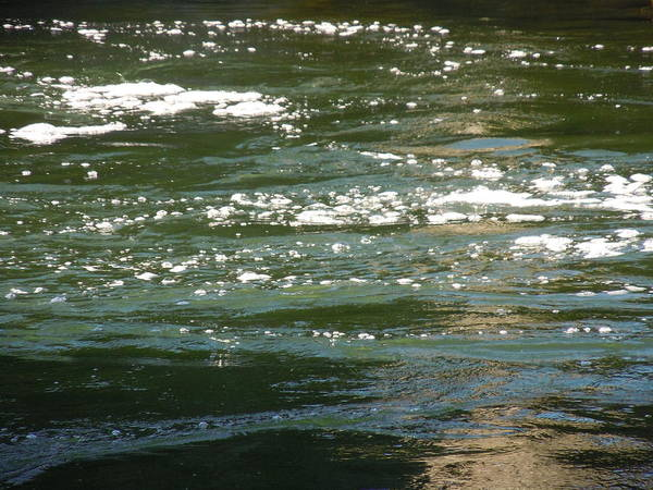 Yuba River Poster featuring the photograph Yuba River Reflections by Dan Whittemore