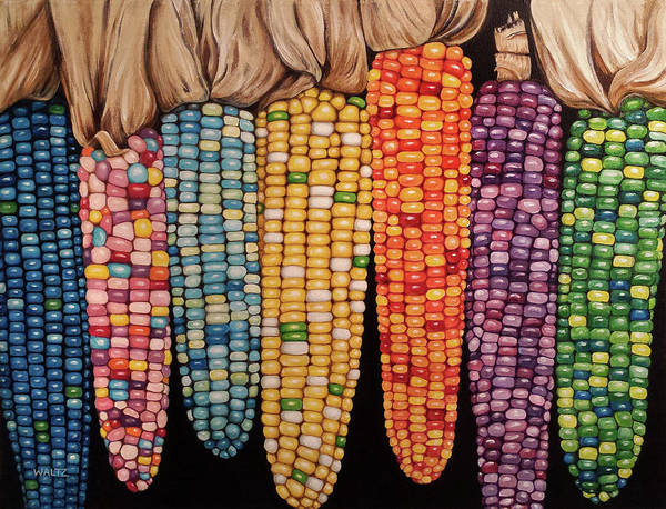 Zea Mays Glass Gem Corn Poster By Beth Waltz