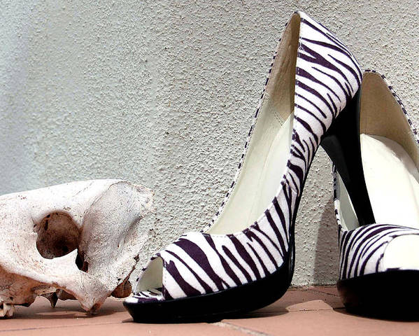 Shoes Poster featuring the photograph Zebra Heels And Skull by Heather S Huston