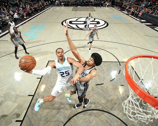 Nba Pro Basketball Poster featuring the photograph Charlotte Hornets V Brooklyn Nets by Nathaniel S. Butler