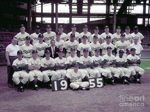 Sandy Koufax Poster featuring the photograph 1955 Brooklyn Dodgers by Kidwiler Collection