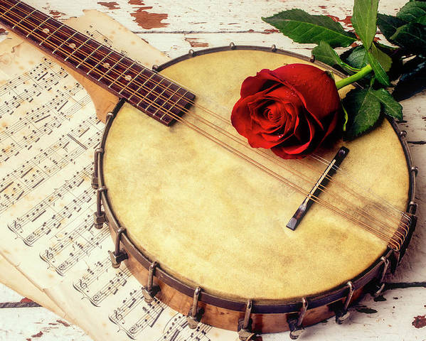 Mandolin Banjo Poster featuring the photograph Banjo And Red Rose by Garry Gay