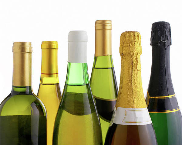 White Background Poster featuring the photograph Bottles Of White Wine And Champagne by Mistikas
