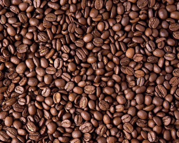 Coffee Bean Wallpaper Poster By Derek Northrop
