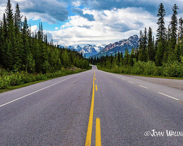 Alberta Poster featuring the photograph Icefields Parkway by Joan Wallner