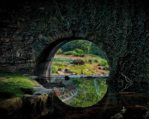 Bridge Poster featuring the photograph In the Middle of A Reflection by Zayne Diamond Photographic