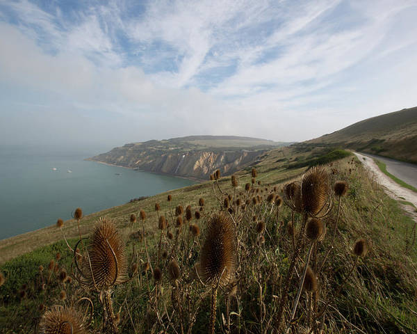 Tranquility Poster featuring the photograph Looking Towards Alum Bay by Barbara Close