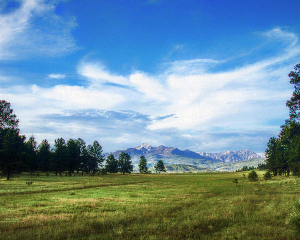Colorado Poster featuring the photograph Mount Pagosa Meadow by Mike Braun