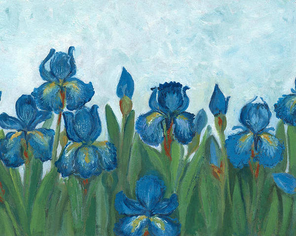 Oil Painted Blue Iris Flowers Poster By Mitza