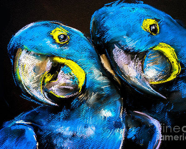 Love Poster featuring the digital art Pastel Painting Of A Blue Parrots On A by Ivailo Nikolov