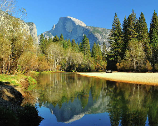 Scenics Poster featuring the photograph Reflections Of Half Dome by Sandy L. Kirkner