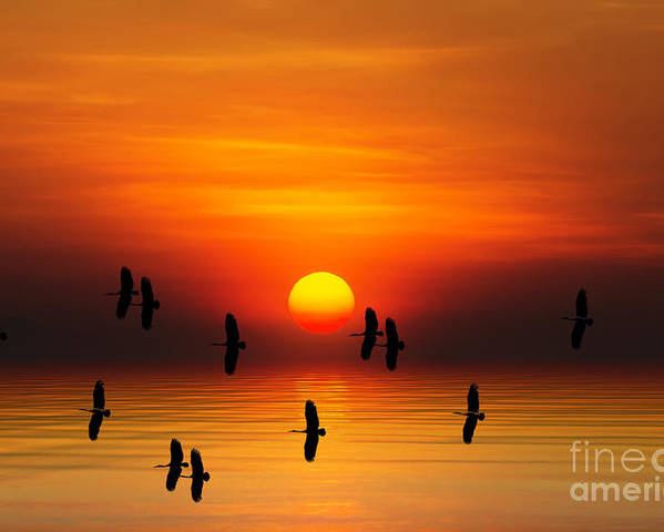 Sunrise Poster featuring the digital art Tropical Colorful Sunset, Songkhla by Siriwat Srinuroht