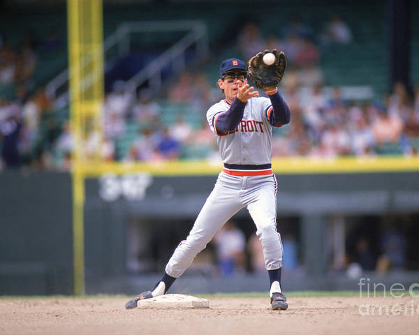 American League Baseball Poster featuring the photograph Alan Trammell by Ron Vesely