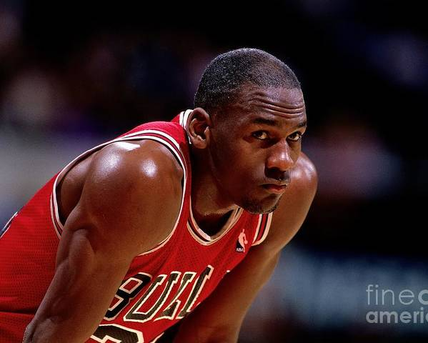 Chicago Bulls Poster featuring the photograph Michael Jordan by Nba Photos