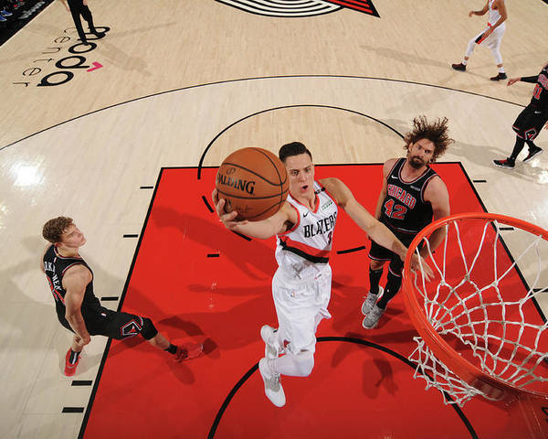 Nba Pro Basketball Poster featuring the photograph Zach Collins by Cameron Browne