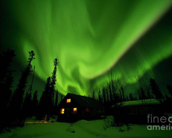 00551581 Poster featuring the photograph Aurora Borealis Alaska by Michael Quinton