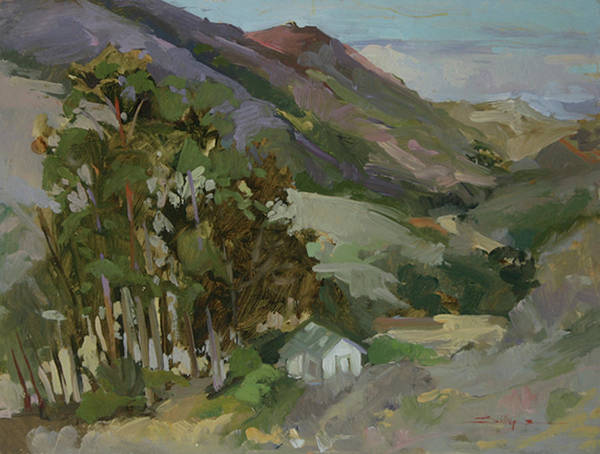 Pleinair Painting Poster featuring the painting - Catalina Island by Betty Jean Billups