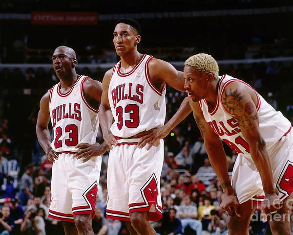 Chicago Bulls Poster featuring the photograph Dennis Rodman, Scottie Pippen, and Michael Jordan by Andrew D. Bernstein