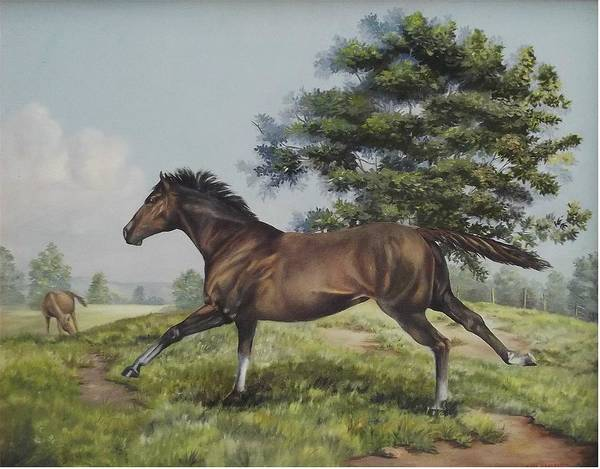 Horse In Field Poster featuring the painting Energy To Burn by Wanda Dansereau