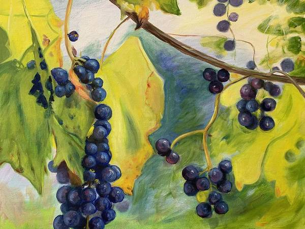 Wine Poster featuring the painting Grapes On The Vine by Anne Kushnick