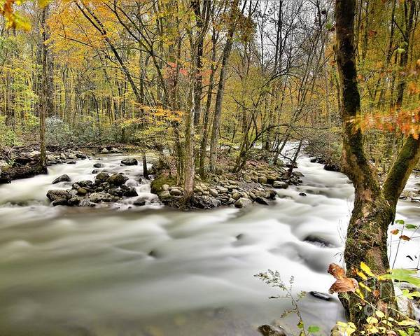 Little Pigeon River Poster featuring the photograph Greenbrier In The Smokies 2 by Dennis Nelson