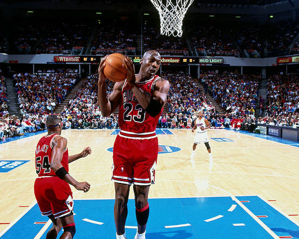 Chicago Bulls Poster featuring the photograph Horace Grant and Michael Jordan by Brian Drake