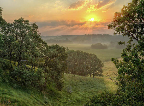 Summer Landscapes Poster featuring the photograph July Morning Along the Ridge by Bruce Morrison