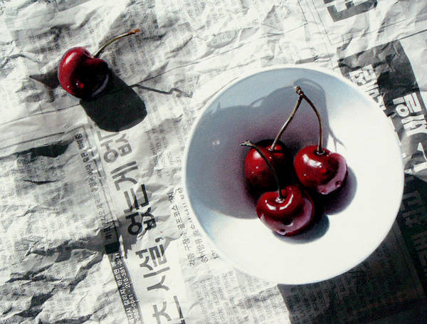 Cherries Poster featuring the painting Korean Cherries by Dianna Ponting