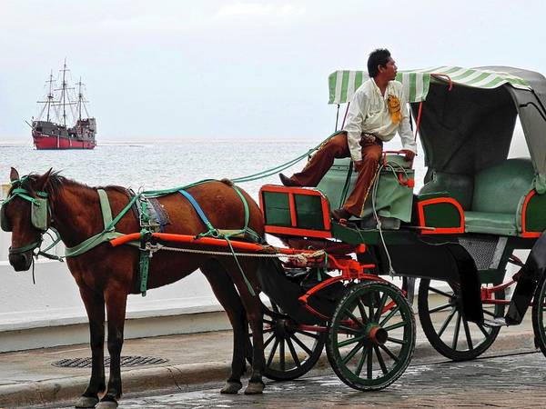 Horse Poster featuring the photograph Lovely Transportation in Cozumel by Kirsten Giving